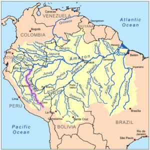 Rio Ucayalil in Zuid Amerika
