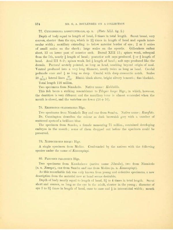 Cunningtonia longiventralis - Eerstbeschrijving1