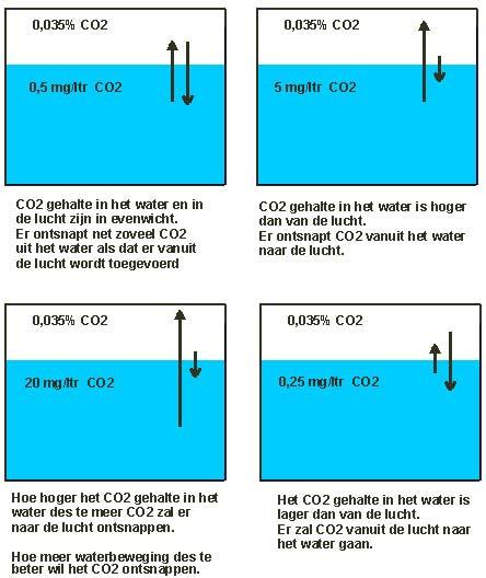 Co2 evenwicht in het water