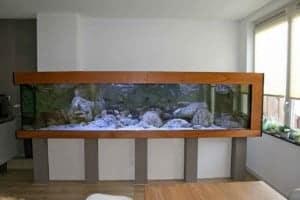 Tanganyika aquarium 350x115x90