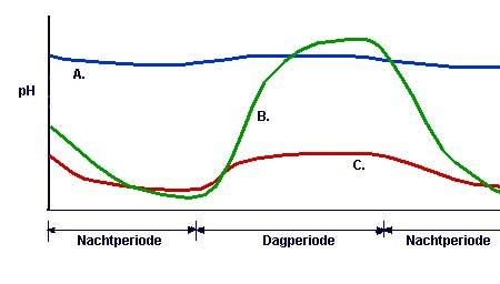 Natuurlijk pH verloop