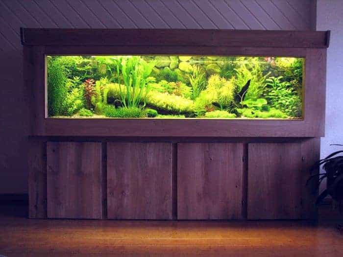 Populair Bouw van mijn houten aquarium - AquaInfo @QA69