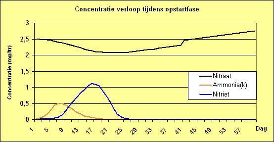 Concentratie verloop tijdens opstartfase aquarium