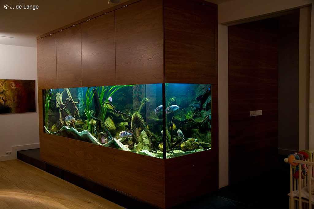 Het aquarium van Tom Mulders