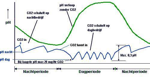 Situatie 1 - pH overdag laag - nacht hoog