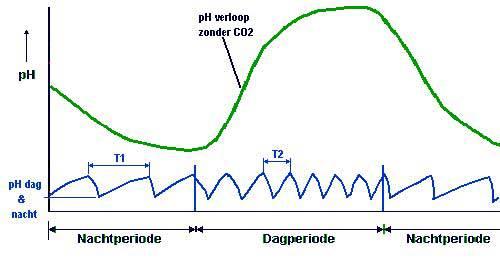 Situatie 2 - pH dag en nacht gelijk