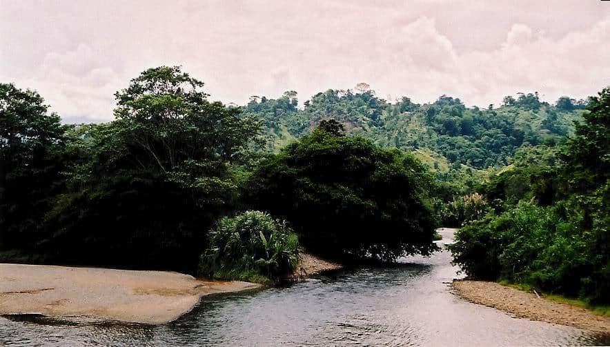 Rio Guabo - Panama
