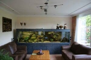 Malawi aquarium Hobbykwekers 335x70x70