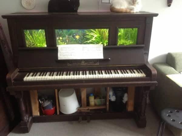 Piano aquarium techniek
