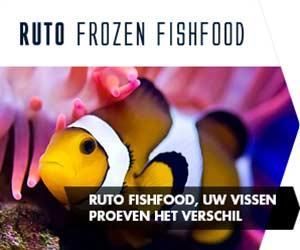 Ruto Fishfood