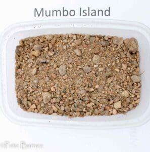 Mumbo Island - substraat droog